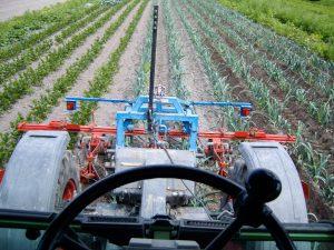 Bodenbearbeitung im Gemüsefeld